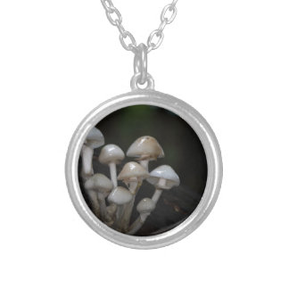 Porcelain fungus, Oudemansiella mucida Silver Plated Necklace