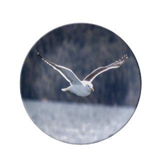 Porcelain plate Gull #1
