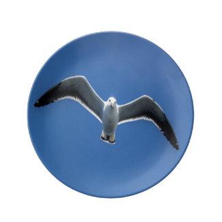 Porcelain plate Gull #3