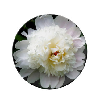 Porcelain Plate Small, Double White Peony