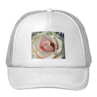 Porcelana de las macros subió gorras