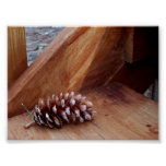 Porch Pine Cone Posters
