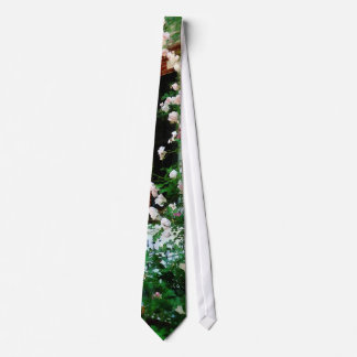 Porch With Climbing Roses Tie