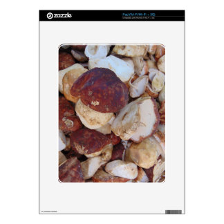 Porcini Mushrooms Decal For iPad