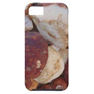 Porcini Mushrooms iPhone SE/5/5s Case