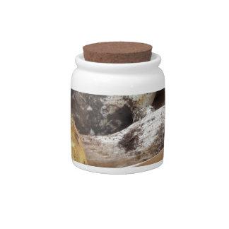 Porcini mushrooms isolated on white background candy jar