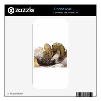 Porcini mushrooms isolated on white background iPhone 4 decals