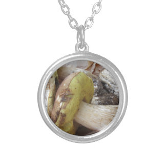 Porcini mushrooms isolated on white background silver plated necklace