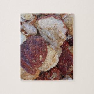 Porcini Mushrooms Jigsaw Puzzle