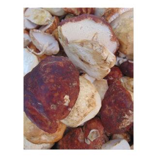 Porcini Mushrooms Letterhead