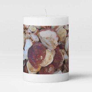 Porcini Mushrooms Pillar Candle