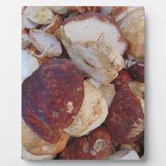 Porcini Mushrooms Plaque