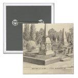 Porción Sacto, arbolado del cementerio del res Pin