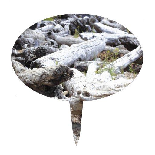 Porciones de Driftwood Palillos De Tarta