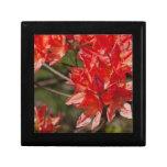 Porciones de flores rojas cajas de joyas