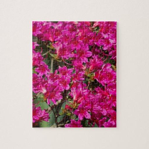 Porciones de flores salvajes rosadas brillantes rompecabezas