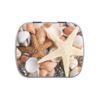 Porciones de Seashells bonitos Latas De Caramelos