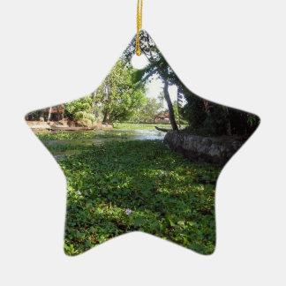 Porciones de verdor en una zona costera adorno de cerámica en forma de estrella