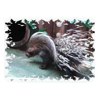 """porcupine-21.jpg invitación 5"""" x 7"""""""