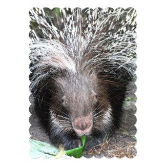 """porcupine-25.jpg invitación 5"""" x 7"""""""