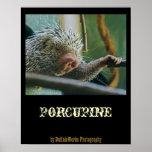 Porcupine 2 Poster