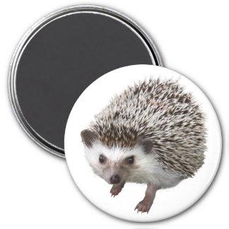 Porcupine 3 Inch Round Magnet