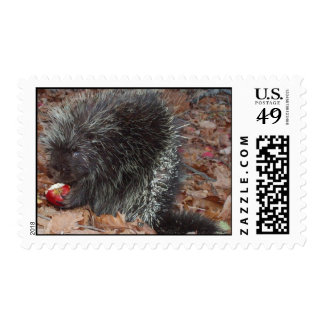 Porcupine and Apple Postage