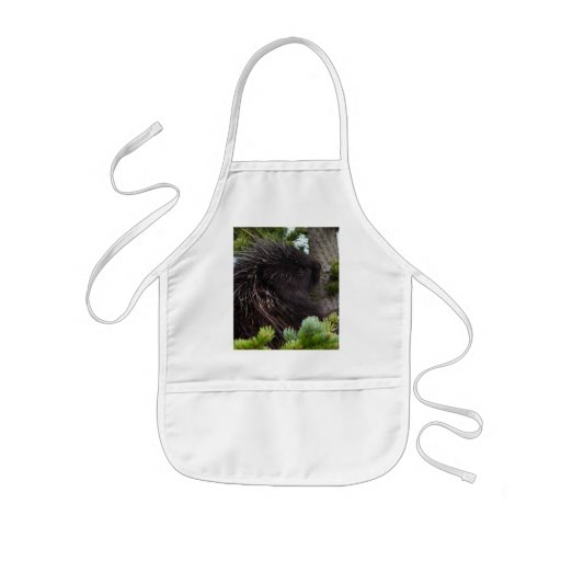 porcupine apron