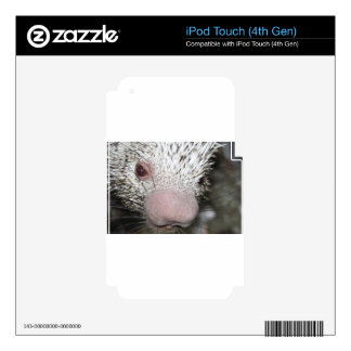 Porcupine close up skins for iPod touch 4G