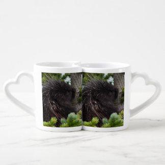 porcupine coffee mug set