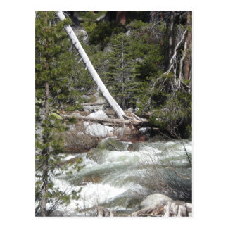 Porcupine Creek Yosemite Postcard