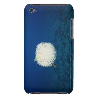Porcupine Fish iPod Touch Case