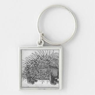Porcupine, from 'Historia Animalium' Keychain