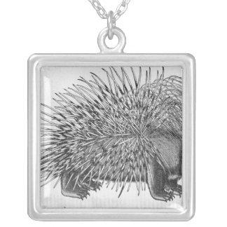 Porcupine, from 'Historia Animalium' Square Pendant Necklace
