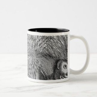 Porcupine, from 'Historia Animalium' Two-Tone Coffee Mug