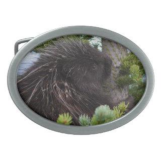 porcupine hugging tree oval belt buckle