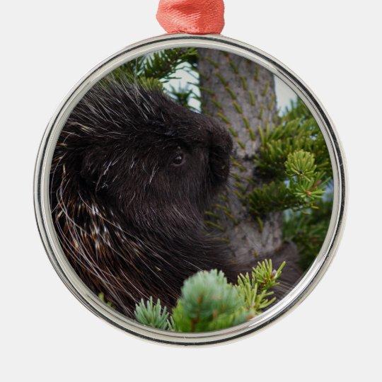 porcupine hugging tree metal ornament