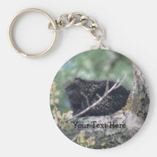 Porcupine In Tree Animal Nature Photo Keychain