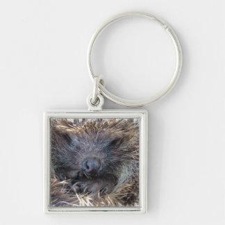 Porcupine Keychain
