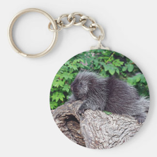 Porcupine Lounging Key Chain