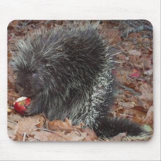 porcupine mouse pad