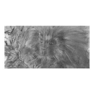 Porcupine Paradise Card