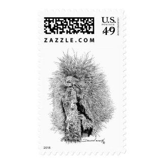 Porcupine Postage Stamp