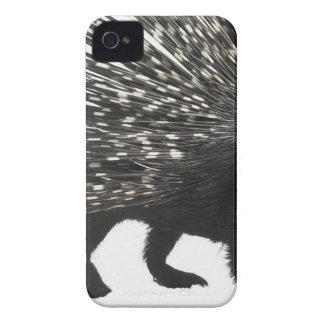 Porcupine quills Case-Mate iPhone 4 case
