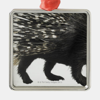 Porcupine quills christmas ornament