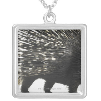 Porcupine quills silver plated necklace