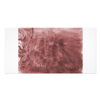 Porcupine Red Card