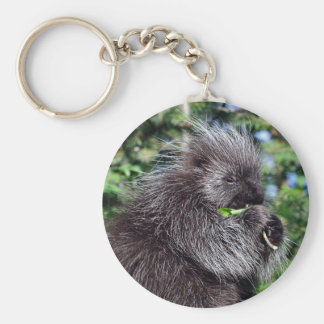 Porcupine Snacking Key Chains