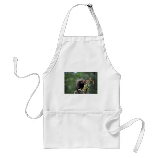 Porcupine-summer-youngster Adult Apron