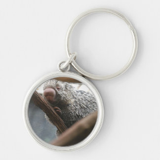 Porcupine with Funny Nose Keychain